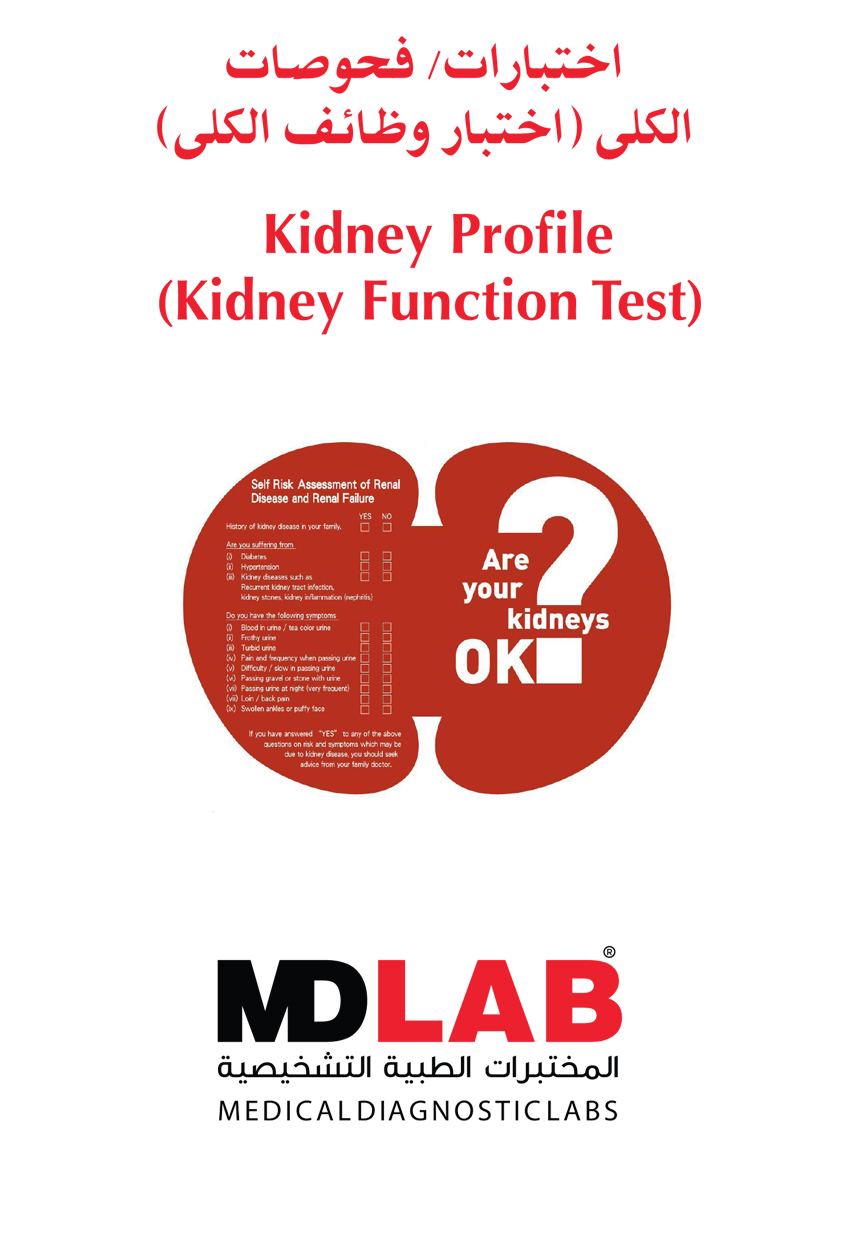 Kidney Profile  Kidney Function Test